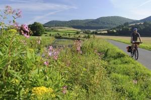 Der Leine-Heide-Radweg