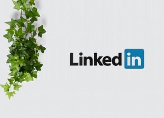 LinkedIn als neues B2B Netzwerk für die TMN