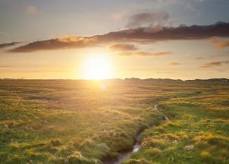1 Milliarde Euro für Klimaschutz in Niedersachsen