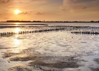 """Projekt """"Klimawandel anpacken – Anpassungsstrategien für den Tourismus in Niedersachsen"""""""