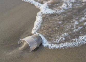 Web-Seminar: Plastikbewusste Destinationen – auch in Zeiten von Corona?