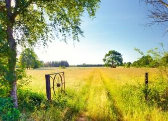 22.06.2021 | Gemeinsam stark: Austausch mit der Exzellenzinitiative Nachhaltige Reiseziele
