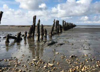 Leitfaden für Gastgeberinnen und Gastgeber im UNESCO-Weltnaturerbe Wattenmeer