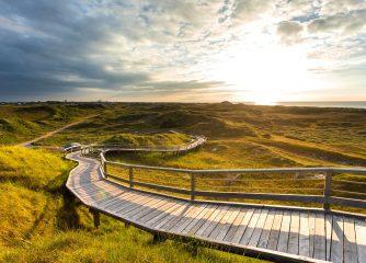 TourismusMarketing Niedersachsen wird Fördermitglied beim BVDIU